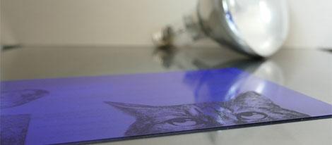 Intagliotypie Technik - belichtete Druckplatte