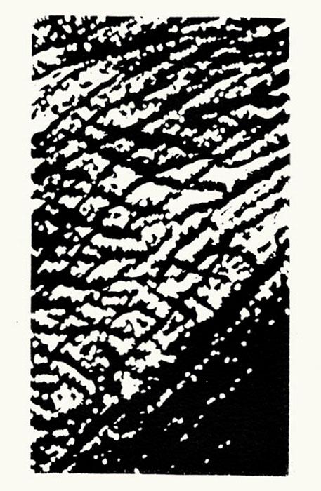 Linolschnitt